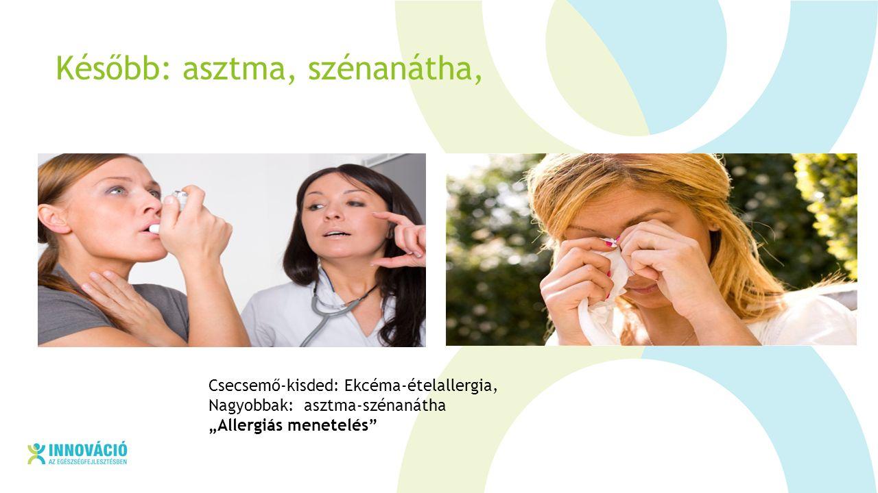 """Később: asztma, szénanátha, Csecsemő-kisded: Ekcéma-ételallergia, Nagyobbak: asztma-szénanátha """"Allergiás menetelés"""