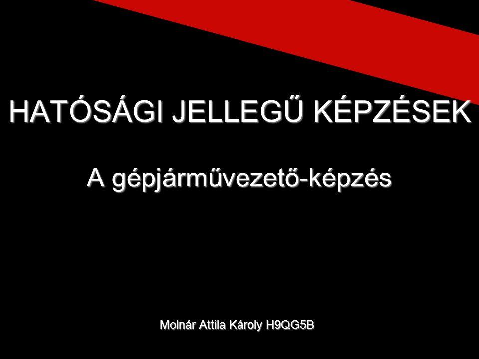 Molnár Attila Károly H9QG5B HATÓSÁGI JELLEGŰ KÉPZÉSEK A gépjárművezető-képzés