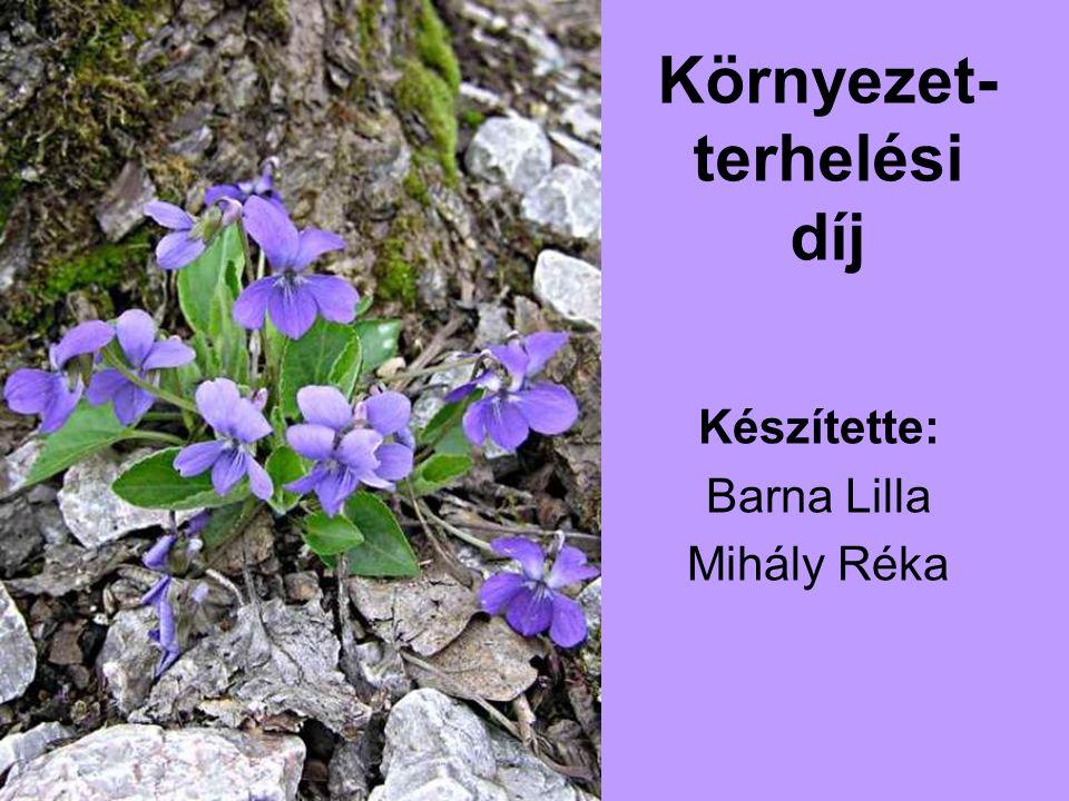 Környezet- terhelési díj Készítette: Barna Lilla Mihály Réka