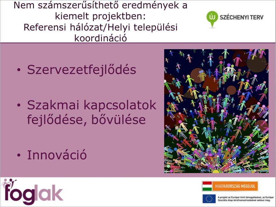 Nem számszerűsíthető eredmények a kiemelt projektben: Referensi hálózat/Helyi települési koordináció Szervezetfejlődés Szakmai kapcsolatok fejlődése, bővülése Innováció