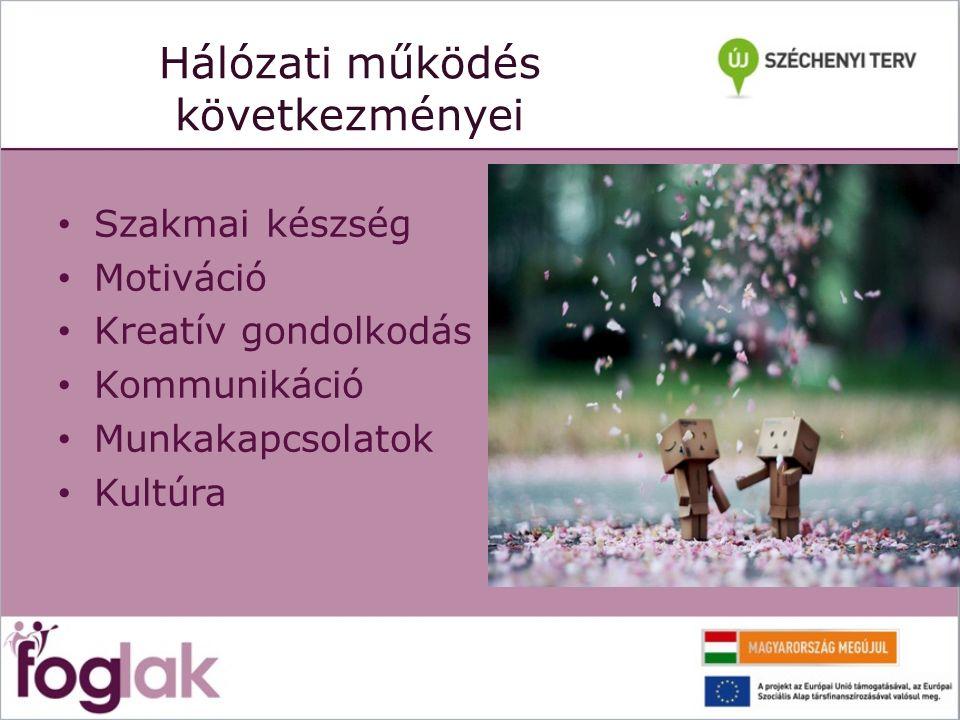 Hálózati működés következményei Szakmai készség Motiváció Kreatív gondolkodás Kommunikáció Munkakapcsolatok Kultúra