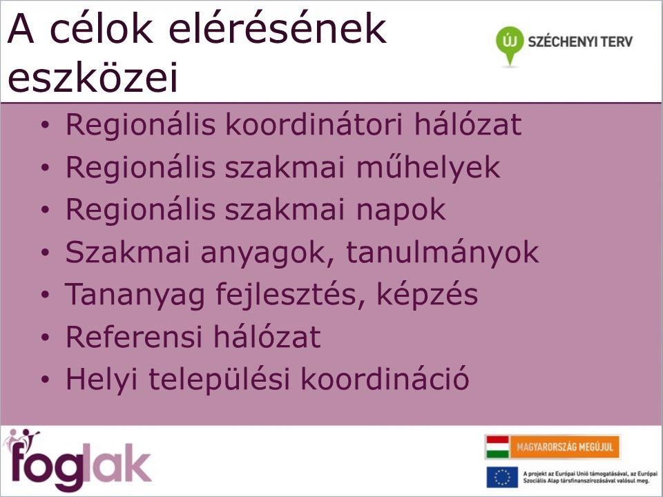 A célok elérésének eszközei Regionális koordinátori hálózat Regionális szakmai műhelyek Regionális szakmai napok Szakmai anyagok, tanulmányok Tananyag