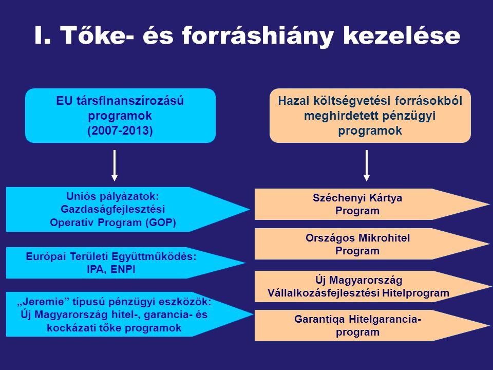 I. Tőke- és forráshiány kezelése Hazai költségvetési forrásokból meghirdetett pénzügyi programok Széchenyi Kártya Program Országos Mikrohitel Program