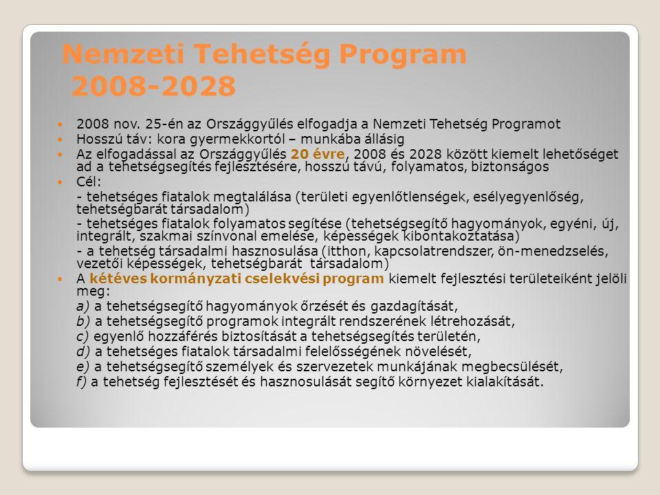 Nemzeti Tehetség Program 2008-2028 2008 nov. 25-én az Országgyűlés elfogadja a Nemzeti Tehetség Programot Hosszú táv: kora gyermekkortól – munkába áll