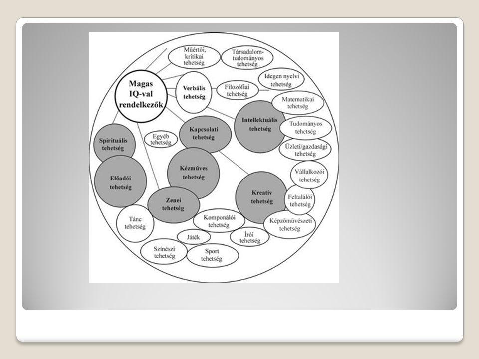 """Pályázatok 2009-2010 Integrált Tehetségsegítő Program TÁMOP 3.4.4-B/08/1-2 """"Országos Tehetségsegítő Hálózat Kialakítása – Magyar Géniusz Integrált Tehetségsegítő Program legkiválóbb programok elterjesztése, újak indítása, átjárási pontok, környezet (szülők), hasznosulás, hátrányos helyzet hálózatképzés segítése Tehetségpont, Tehetségnap, Tehetségsegítő Tanácsok tehetséges fiatalok önszerveződése Iskolai programok, versenyek TÁMOP 3.4.3-08/1-2 pedagógusok tehetséggondozási továbbképzése – kötelező pedagógus felkészítés egyéni fejlesztési programokra mentorálás, egyéni fejlesztési programok kreatív tanulmányi versenyek, térségi programok tehetséggondozási eszközök beszerzése Tehetségpontokkal, Tehetségsegítő Tanácsokkal együttm."""