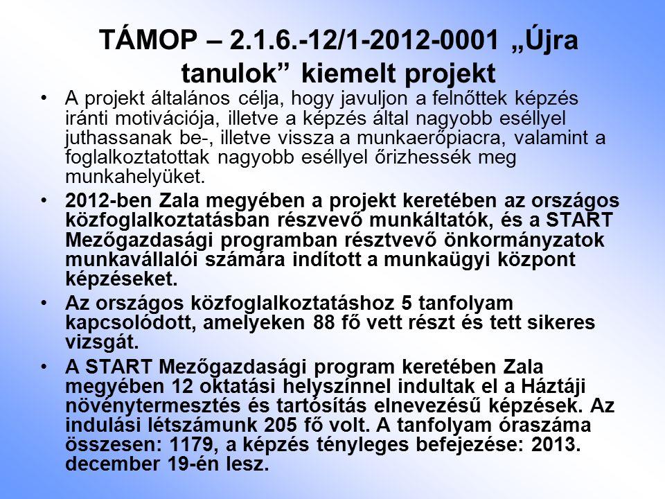 """TÁMOP – 2.1.6.-12/1-2012-0001 """"Újra tanulok kiemelt projekt A projekt általános célja, hogy javuljon a felnőttek képzés iránti motivációja, illetve a képzés által nagyobb eséllyel juthassanak be-, illetve vissza a munkaerőpiacra, valamint a foglalkoztatottak nagyobb eséllyel őrizhessék meg munkahelyüket."""