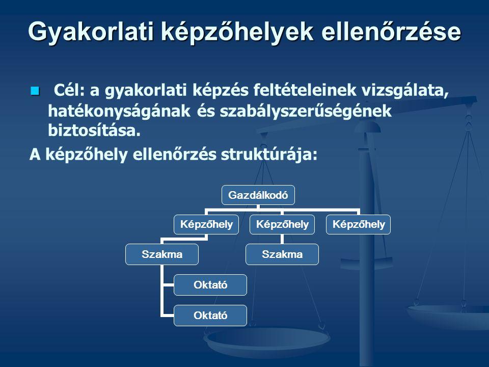 Gyakorlati képzőhelyek ellenőrzése Cél: a gyakorlati képzés feltételeinek vizsgálata, hatékonyságának és szabályszerűségének biztosítása.