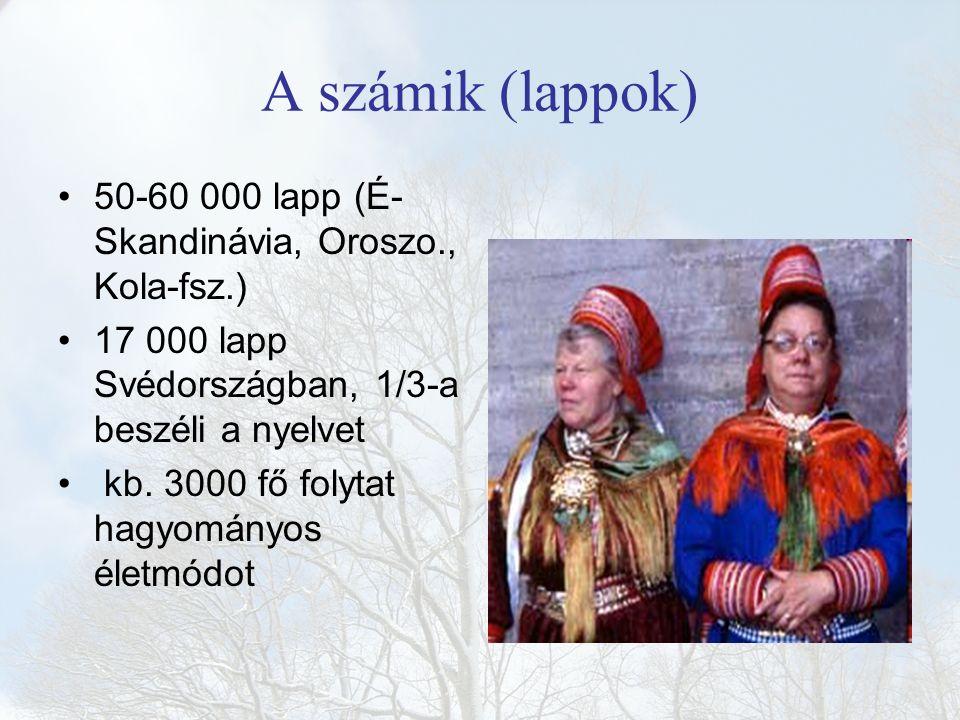 A számik (lappok) 50-60 000 lapp (É- Skandinávia, Oroszo., Kola-fsz.) 17 000 lapp Svédországban, 1/3-a beszéli a nyelvet kb. 3000 fő folytat hagyomány