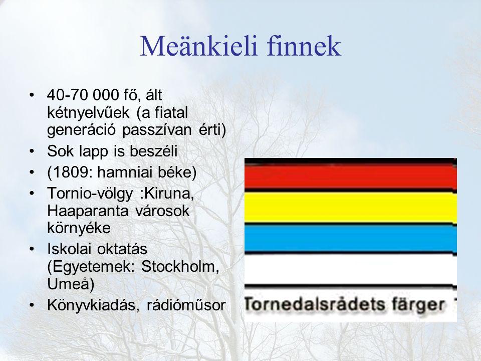 Meänkieli finnek 40-70 000 fő, ált kétnyelvűek (a fiatal generáció passzívan érti) Sok lapp is beszéli (1809: hamniai béke) Tornio-völgy :Kiruna, Haap