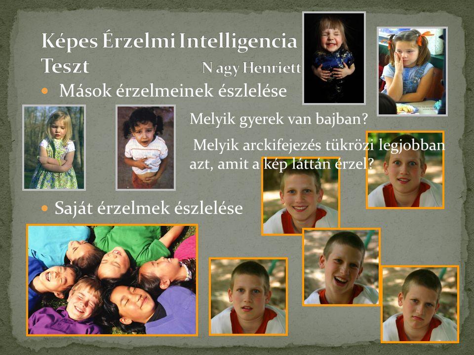 Melyik gyerek van bajban. Melyik arckifejezés tükrözi legjobban azt, amit a kép láttán érzel.