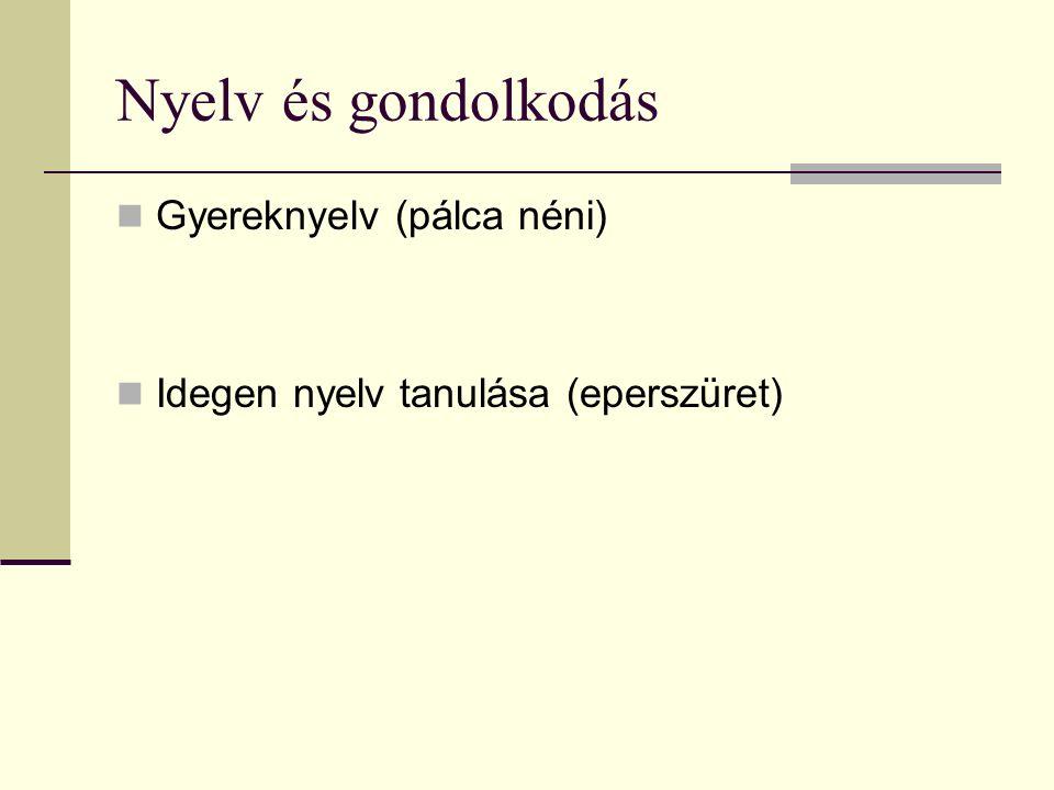 Nyelv és gondolkodás Gyereknyelv (pálca néni) Idegen nyelv tanulása (eperszüret)