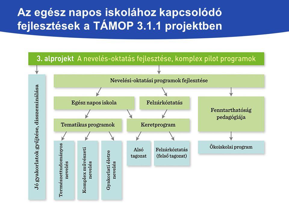A nevelési-oktatási programok fenntarthatóságának vizsgálata 35 intézményből 28 iskola a fejlesztés végén is folytatta a programot Gátló tényezők: forráshiány, eszközhiány, helyiségek hiánya Ösztönző tényezők: újfajta módszerek, pedagógusi kompetenciák, tanár-diák kapcsolat javulása, diákok szerették a modulfoglalkozásokat Más intézményekben is alkalmazhatónak ítélték meg a programokat Feltétel: program megismerése, kapcsolattartás a fejlesztésben szerepet vállaló iskolák, anyagi feltételek, eszközök