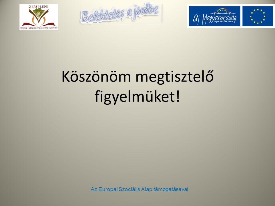 Az Európai Szociális Alap támogatásával Köszönöm megtisztelő figyelmüket!