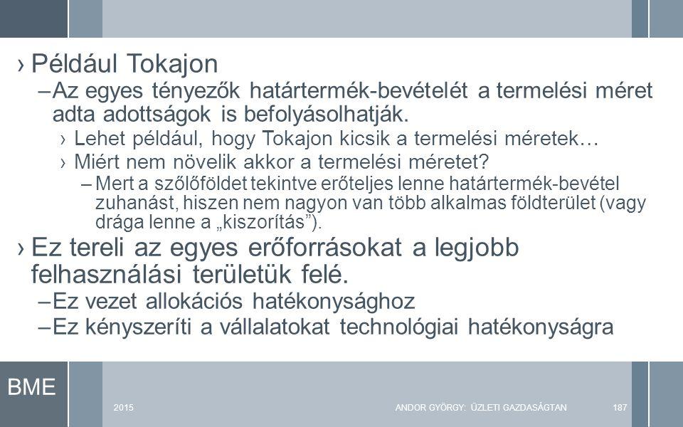 BME 2015ANDOR GYÖRGY: ÜZLETI GAZDASÁGTAN187 ›Például Tokajon –Az egyes tényezők határtermék-bevételét a termelési méret adta adottságok is befolyásolhatják.