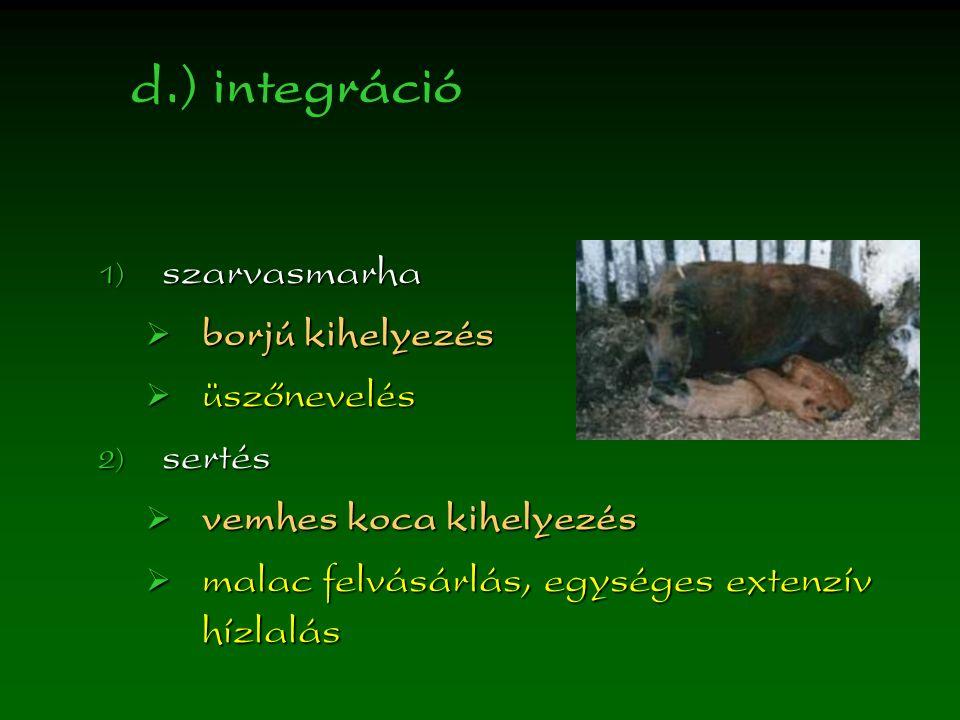d.) integráció  szarvasmarha  borjú kihelyezés  üszőnevelés  sertés  vemhes koca kihelyezés  malac felvásárlás, egységes extenzív hízlalás