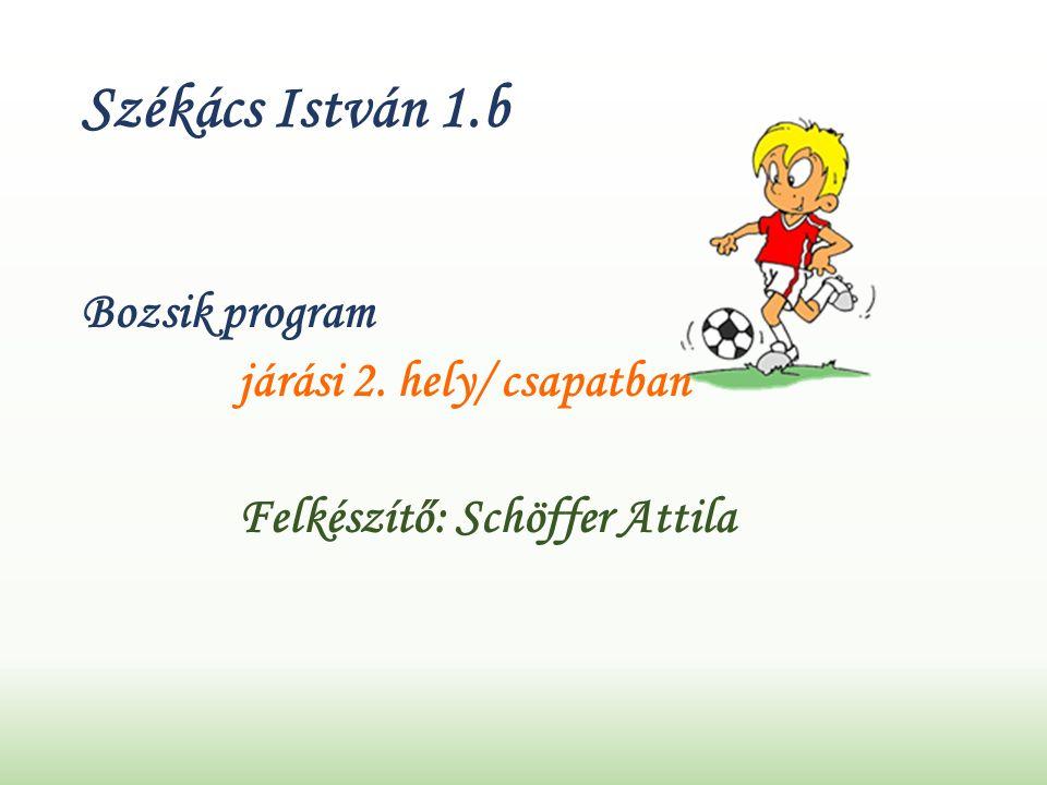 Székács István 1.b Bozsik program járási 2. hely/ csapatban Felkészítő: Schöffer Attila
