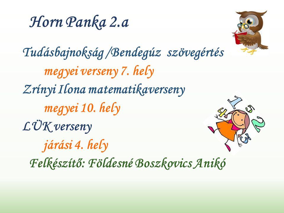 Horn Panka 2.a Tudásbajnokság /Bendegúz szövegértés megyei verseny 7.
