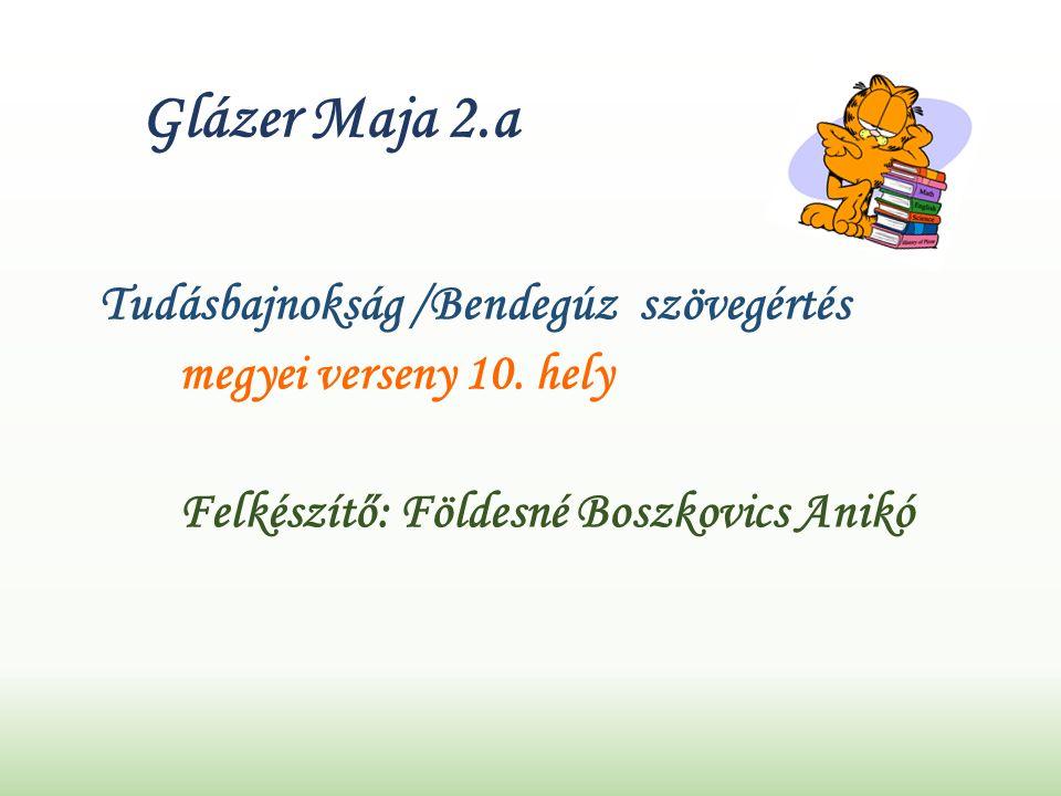 Glázer Maja 2.a Tudásbajnokság /Bendegúz szövegértés megyei verseny 10.