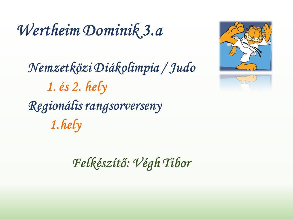 Wertheim Dominik 3.a Nemzetközi Diákolimpia / Judo 1.
