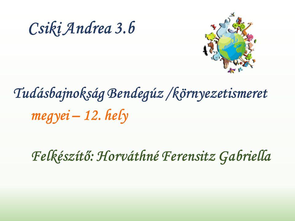 Csiki Andrea 3.b Tudásbajnokság Bendegúz /környezetismeret megyei – 12.