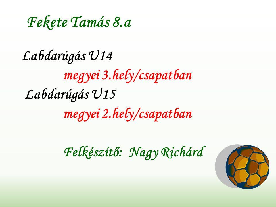 Fekete Tamás 8.a Labdarúgás U14 megyei 3.hely/csapatban Labdarúgás U15 megyei 2.hely/csapatban Felkészítő: Nagy Richárd
