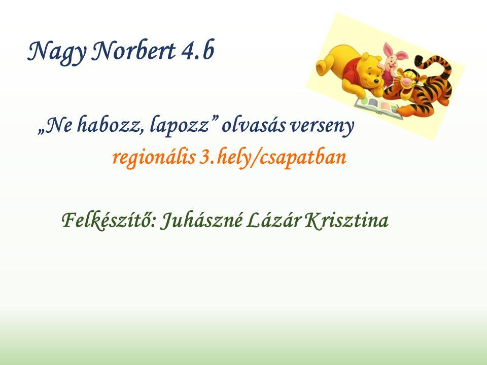 """Nagy Norbert 4.b """"Ne habozz, lapozz olvasás verseny regionális 3.hely/csapatban Felkészítő: Juhászné Lázár Krisztina"""