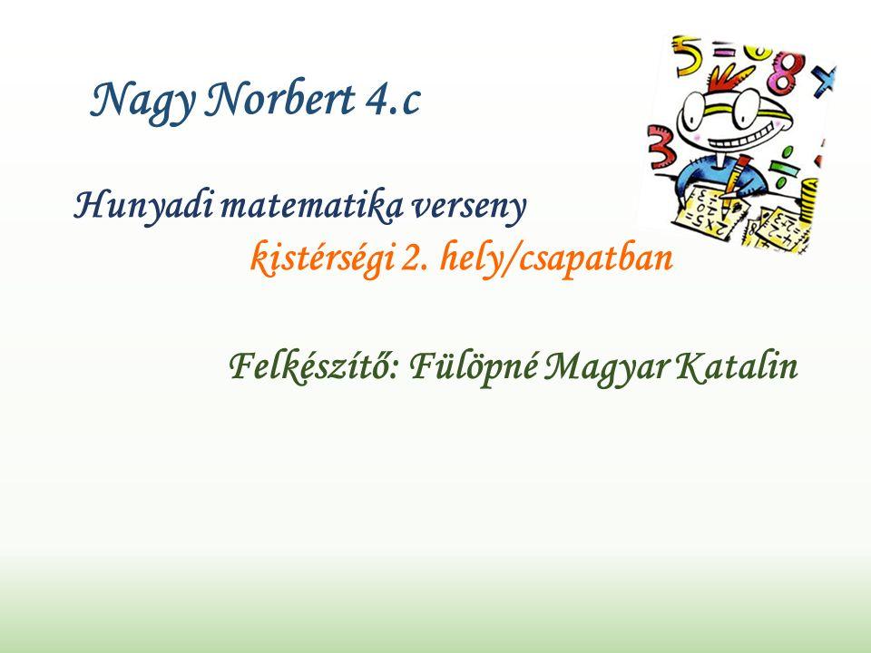 Nagy Norbert 4.c Hunyadi matematika verseny kistérségi 2.