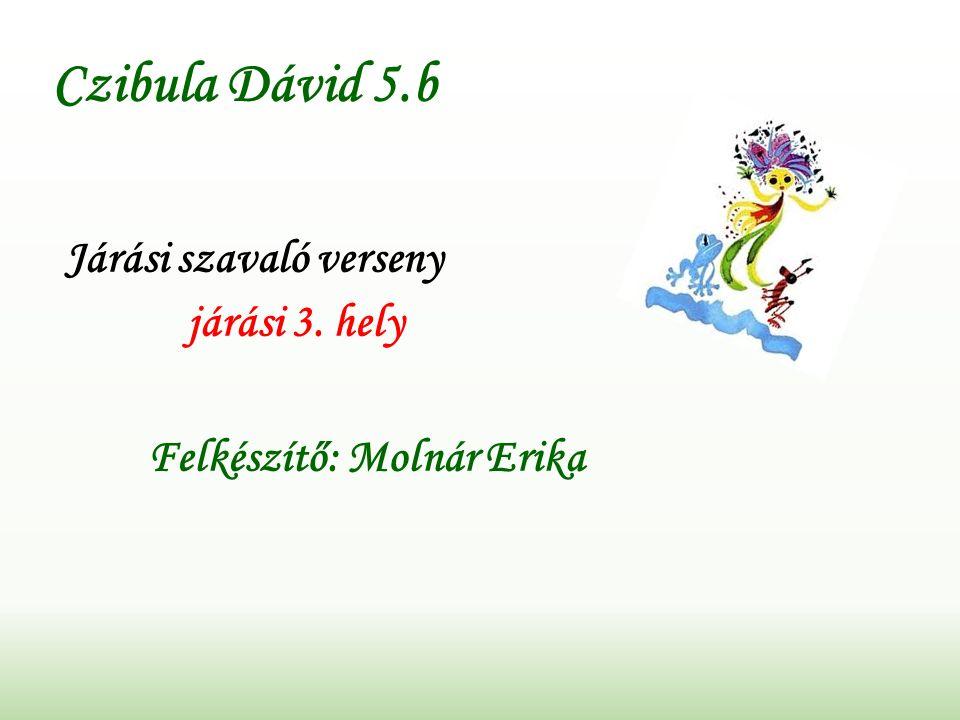 Czibula Dávid 5.b Járási szavaló verseny járási 3. hely Felkészítő: Molnár Erika