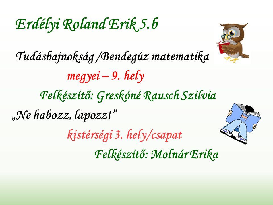 Erdélyi Roland Erik 5.b Tudásbajnokság /Bendegúz matematika megyei – 9.