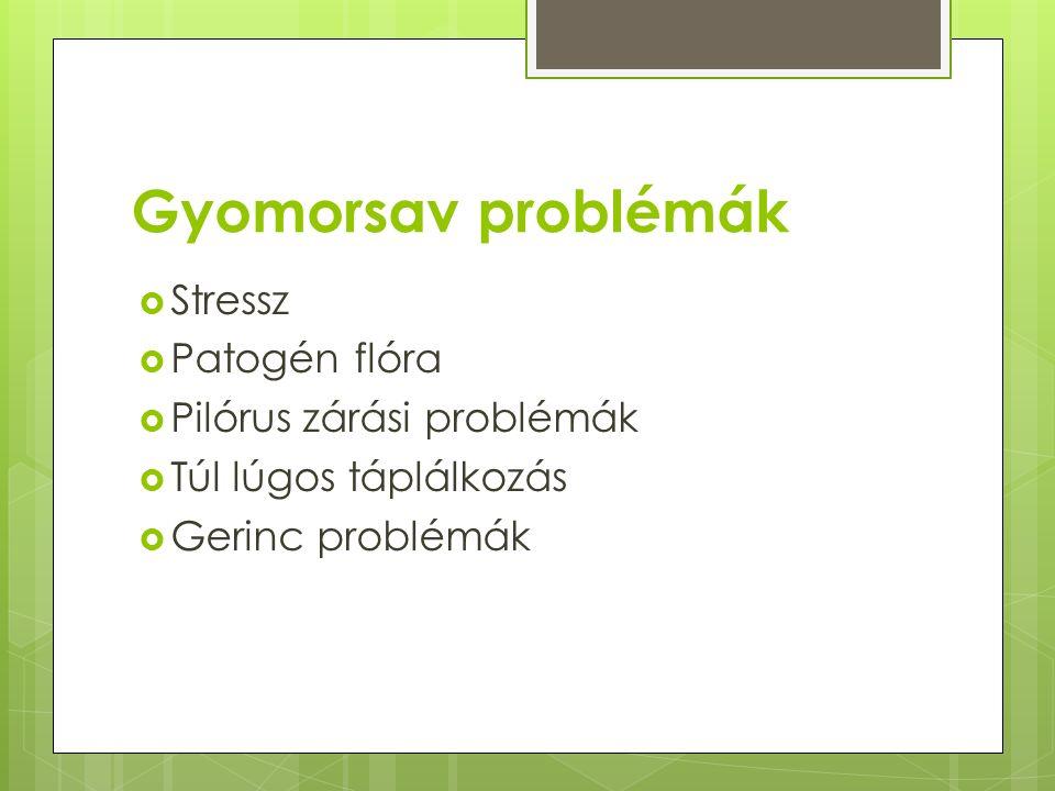 Gyomorsav problémák  Stressz  Patogén flóra  Pilórus zárási problémák  Túl lúgos táplálkozás  Gerinc problémák