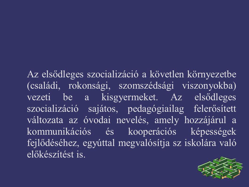 Az elsődleges szocializáció a követlen környezetbe (családi, rokonsági, szomszédsági viszonyokba) vezeti be a kisgyermeket.