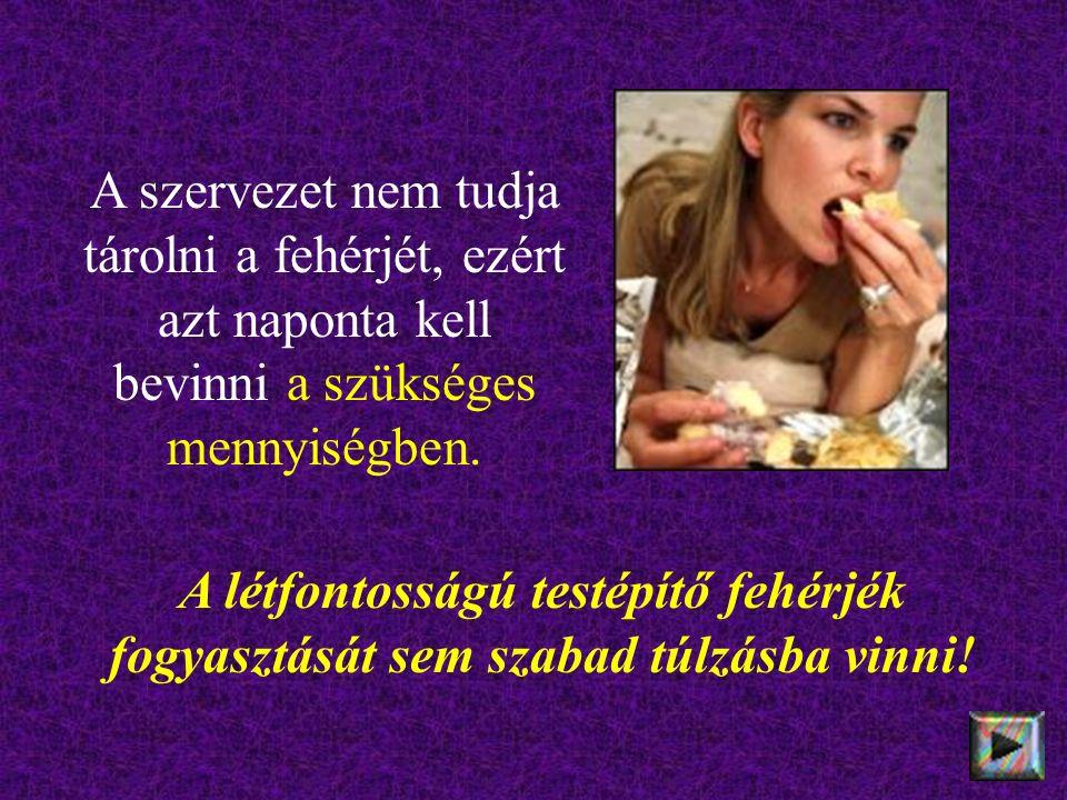 A létfontosságú testépítő fehérjék fogyasztását sem szabad túlzásba vinni! A szervezet nem tudja tárolni a fehérjét, ezért azt naponta kell bevinni a