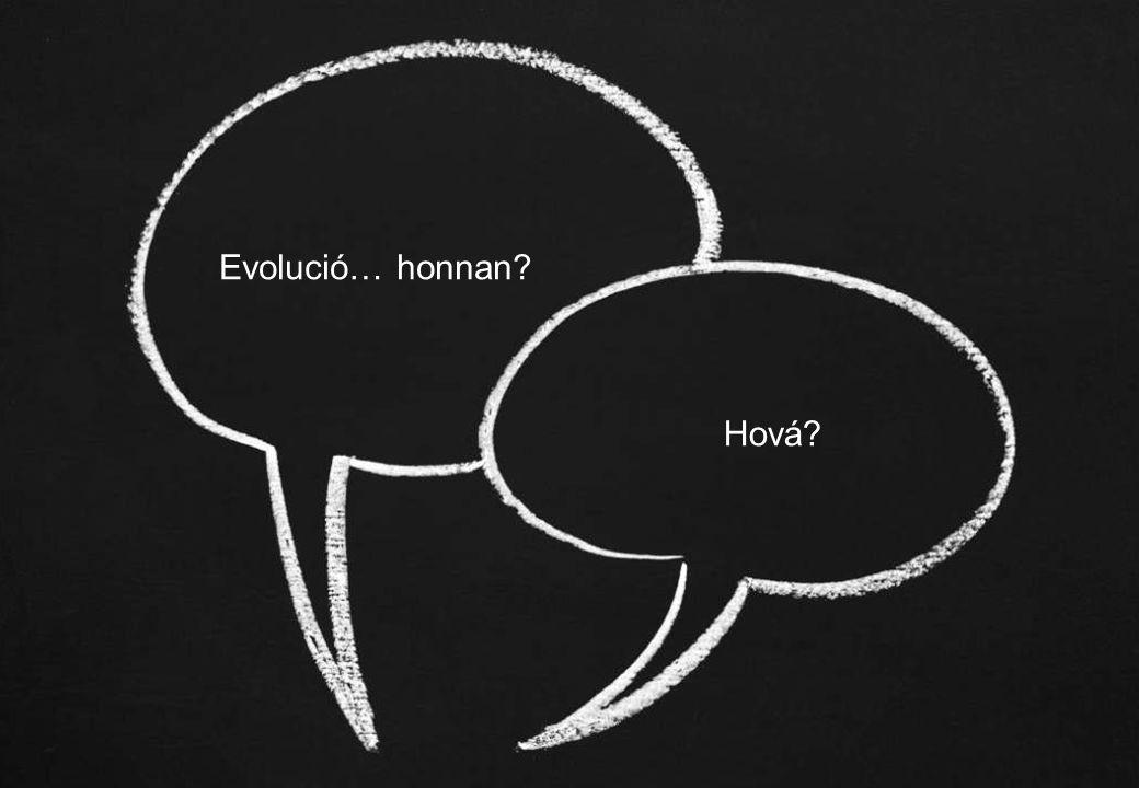 © Synovate 2010 12.00 8.70 5.48 4.63 8.24 5.73 5.27 10.7012.200.50 3.41 16 Evolució… honnan Hová