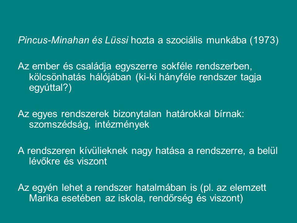 Pincus-Minahan és Lüssi hozta a szociális munkába (1973) Az ember és családja egyszerre sokféle rendszerben, kölcsönhatás hálójában (ki-ki hányféle rendszer tagja egyúttal ) Az egyes rendszerek bizonytalan határokkal bírnak: szomszédság, intézmények A rendszeren kívülieknek nagy hatása a rendszerre, a belül lévőkre és viszont Az egyén lehet a rendszer hatalmában is (pl.