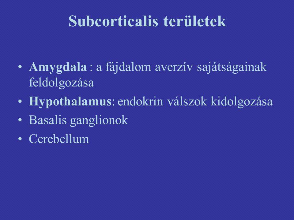 Subcorticalis területek Amygdala : a fájdalom averzív sajátságainak feldolgozása Hypothalamus: endokrin válszok kidolgozása Basalis ganglionok Cerebellum