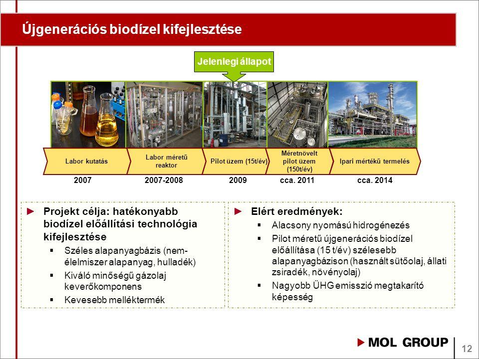 Újgenerációs biodízel kifejlesztése Jelenlegi állapot Labor kutatás Labor méretű reaktor Pilot üzem (15t/év) Méretnövelt pilot üzem (150t/év) Ipari mértékű termelés 2009cca.