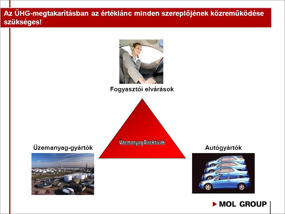 A jogszabályi háttér megteremtésével és a K+F erőforrások koncentrálásával fókuszálni kell: ► A nem élelmiszercélú komponensekre: alga alapú olaj előállítása, cellulóz alapú bio-komponens potenciál felmérése ► A hulladékokra: használt sütőolaj, újra feldolgozott műanyag hulladékok ►A fogyasztók környezettudatossá tételére: oktatás ► A gazdaságosság vizsgálatára a teljes értéklánc mentén: EU-s forrásokkal Ezekhez összefogásra van szükség.