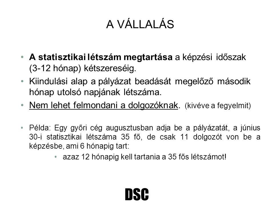 DSC A VÁLLALÁS A statisztikai létszám megtartása a képzési időszak (3-12 hónap) kétszereséig. Kiindulási alap a pályázat beadását megelőző második hón