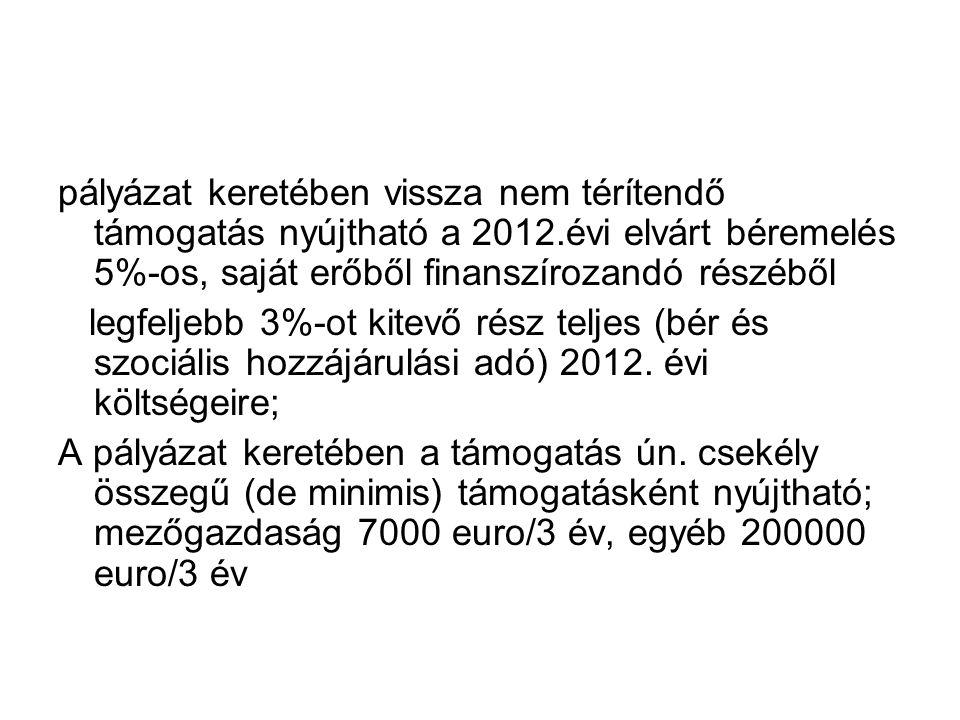 pályázat keretében vissza nem térítendő támogatás nyújtható a 2012.évi elvárt béremelés 5%-os, saját erőből finanszírozandó részéből legfeljebb 3%-ot kitevő rész teljes (bér és szociális hozzájárulási adó) 2012.
