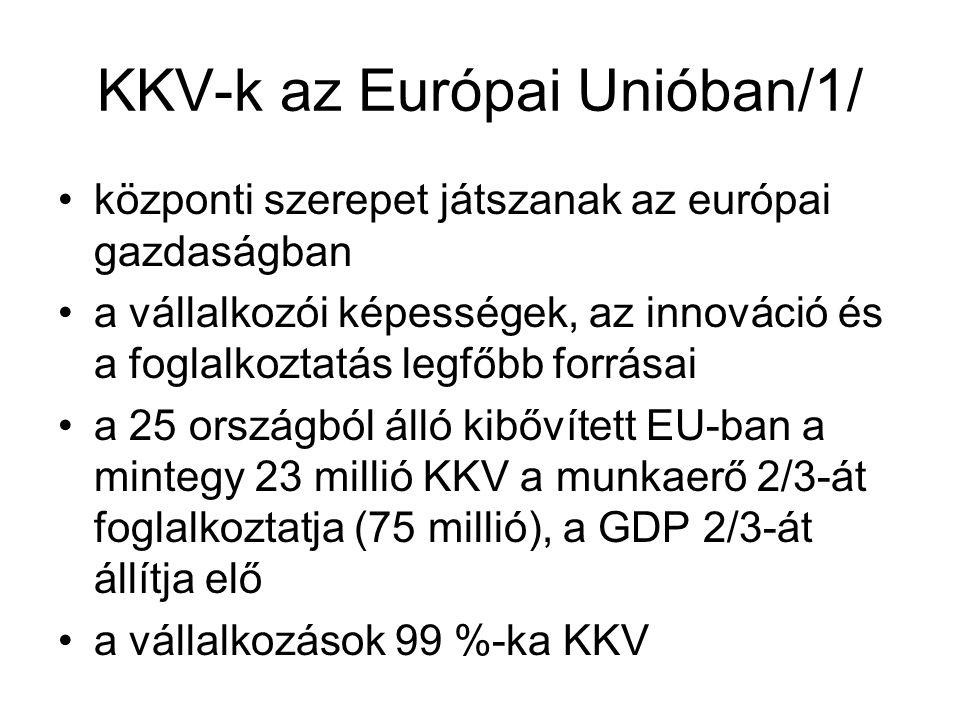 KKV-k az Európai Unióban/1/ központi szerepet játszanak az európai gazdaságban a vállalkozói képességek, az innováció és a foglalkoztatás legfőbb forrásai a 25 országból álló kibővített EU-ban a mintegy 23 millió KKV a munkaerő 2/3-át foglalkoztatja (75 millió), a GDP 2/3-át állítja elő a vállalkozások 99 %-ka KKV