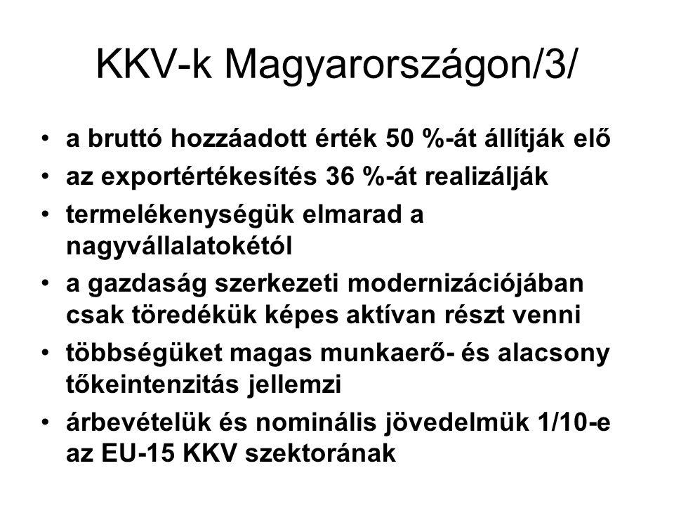 KKV-k Magyarországon/3/ a bruttó hozzáadott érték 50 %-át állítják elő az exportértékesítés 36 %-át realizálják termelékenységük elmarad a nagyvállalatokétól a gazdaság szerkezeti modernizációjában csak töredékük képes aktívan részt venni többségüket magas munkaerő- és alacsony tőkeintenzitás jellemzi árbevételük és nominális jövedelmük 1/10-e az EU-15 KKV szektorának