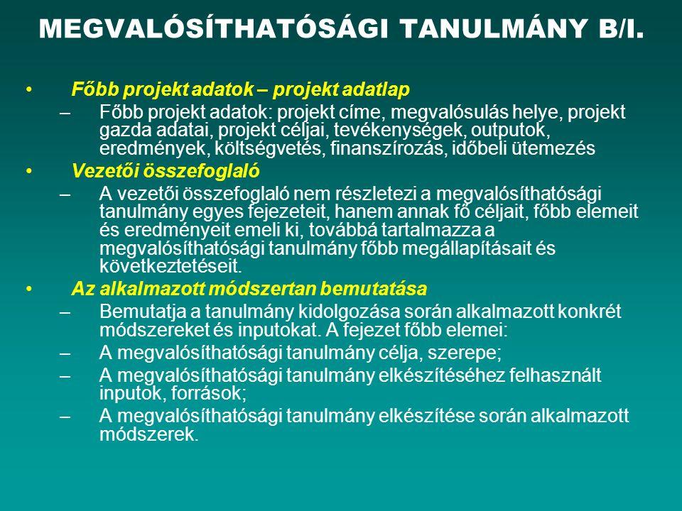 MEGVALÓSÍTHATÓSÁGI TANULMÁNY B/I.