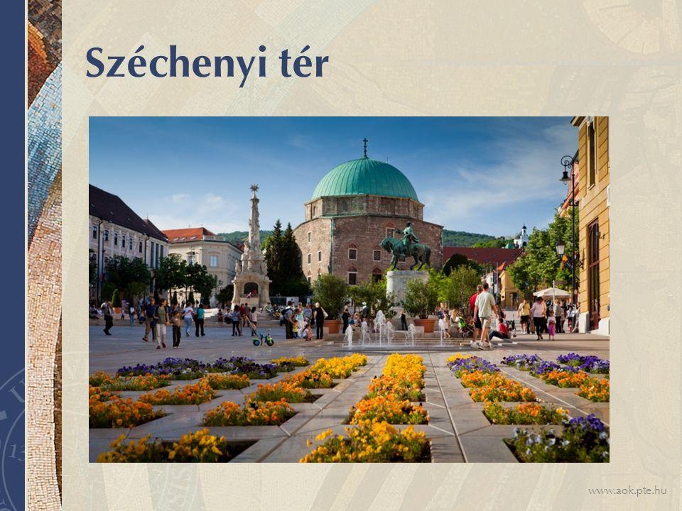 www.aok.pte.hu Széchenyi tér
