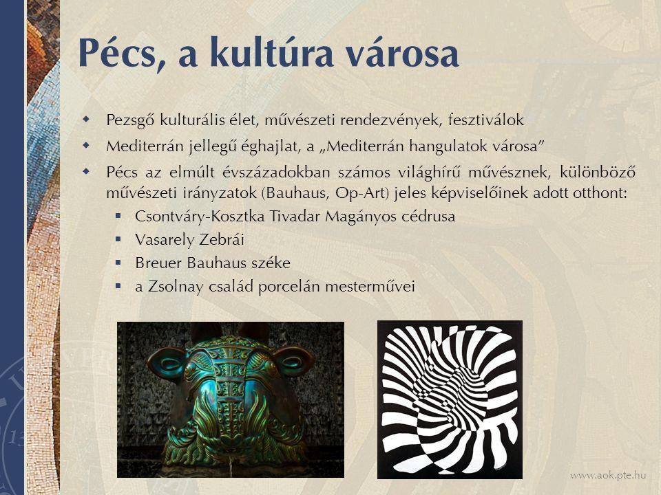 """www.aok.pte.hu Pécs, a kultúra városa  Pezsgő kulturális élet, művészeti rendezvények, fesztiválok  Mediterrán jellegű éghajlat, a """"Mediterrán hangulatok városa  Pécs az elmúlt évszázadokban számos világhírű művésznek, különböző művészeti irányzatok (Bauhaus, Op-Art) jeles képviselőinek adott otthont:  Csontváry-Kosztka Tivadar Magányos cédrusa  Vasarely Zebrái  Breuer Bauhaus széke  a Zsolnay család porcelán mesterművei"""