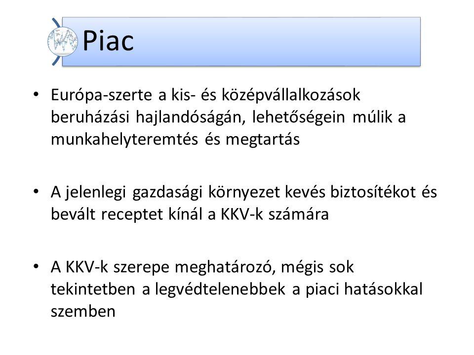 Dr. Kadocsa György A hazai kis és közepes vállalkozások helyzete és fejlesztési lehetőségei