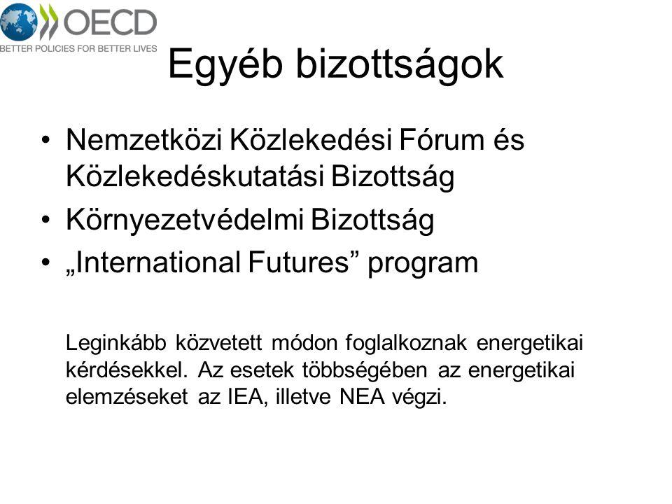 """Egyéb bizottságok Nemzetközi Közlekedési Fórum és Közlekedéskutatási Bizottság Környezetvédelmi Bizottság """"International Futures"""" program Leginkább kö"""