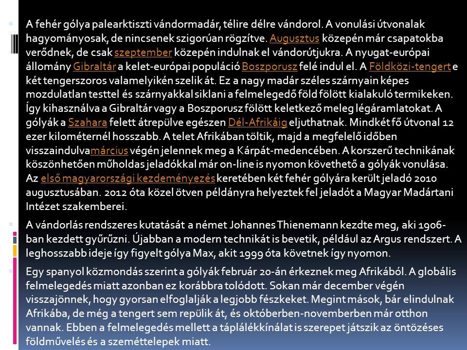 Cseresznye, a móri gólya  http://satellitetracking.eu/page/information http://satellitetracking.eu/page/information  https://www.facebook.com/cseresznyemor https://www.facebook.com/cseresznyemor  https://www.facebook.com/gyongy.virag.31/videos/vb.100004282181368 /599034736915927/?type=2&theater https://www.facebook.com/gyongy.virag.31/videos/vb.100004282181368 /599034736915927/?type=2&theater