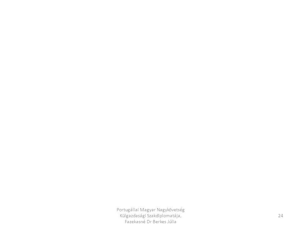 Portugáliai Magyar Nagykövetség Külgazdasági Szakdiplomatája, Fazekasné Dr Berkes Júlia 23