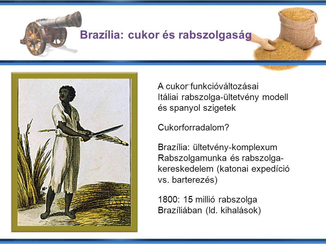 A cukor funkcióváltozásai Itáliai rabszolga-ültetvény modell és spanyol szigetek Cukorforradalom.
