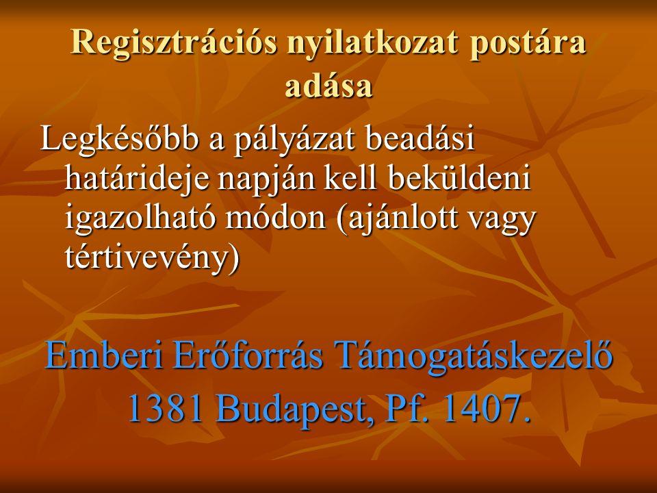 Regisztrációs nyilatkozat postára adása Legkésőbb a pályázat beadási határideje napján kell beküldeni igazolható módon (ajánlott vagy tértivevény) Emberi Erőforrás Támogatáskezelő 1381 Budapest, Pf.